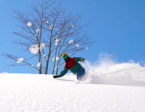 Local Powder Photo Session with my homie !! ~ ほろたちスキー場・ぴっぷスキー場