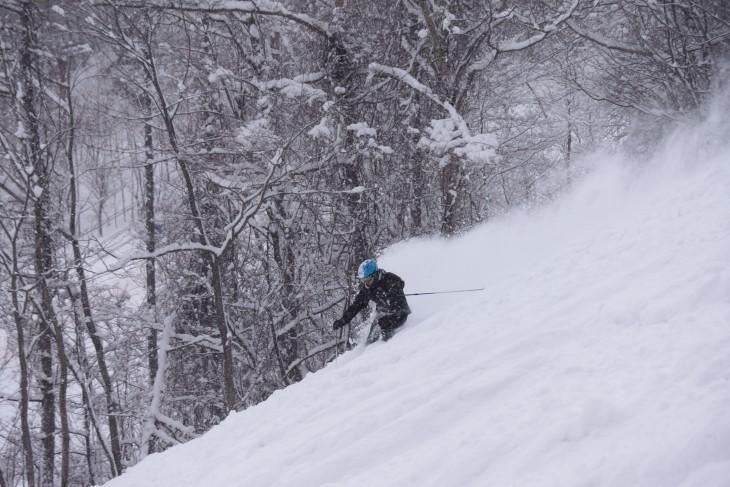 サーフ 天国 スキー 天国