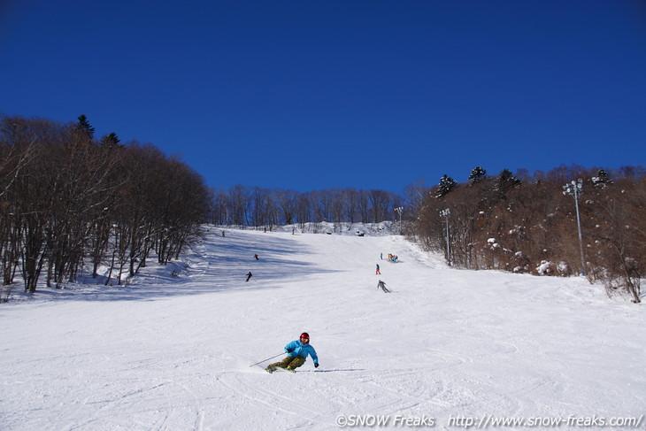 藻 岩山 スキー 場 札幌藻岩山スキー場